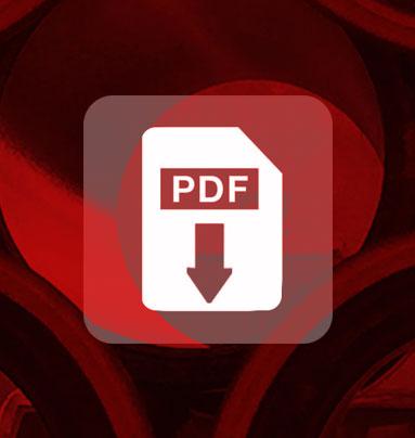 PDF(Small)DL